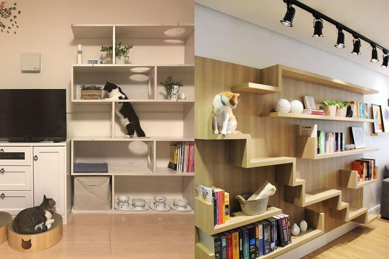 貓狗家居設計參考